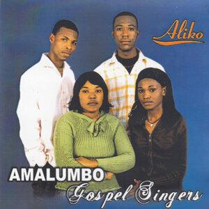 Amalumbo Gospel Singers 歌手頭像