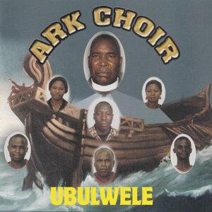 ARK Choir 歌手頭像