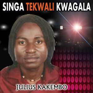 Julius Kakembo 歌手頭像