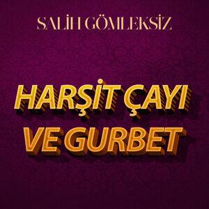 Salih Gömleksiz 歌手頭像