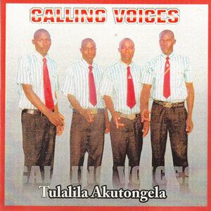 Calling Voices 歌手頭像