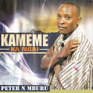 Patrick N Mburu 歌手頭像