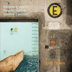 D'Agaro, Ottolini, Zanchini 歌手頭像