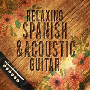 Instrumental Guitar Music|Soft Guitar Music 歌手頭像