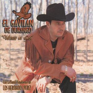 El Gavilan de Durango 歌手頭像