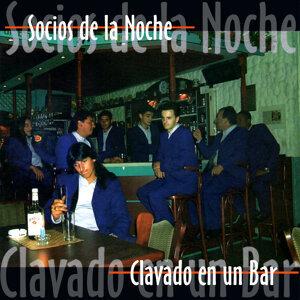Socios De La Noche 歌手頭像