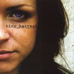 Tiny Harvest 歌手頭像