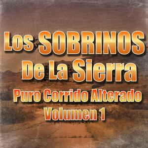 Los Sobrinos De La Sierra 歌手頭像