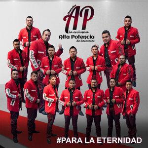 Banda Alta Potencia De Zacatecas 歌手頭像