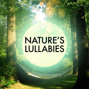 Deep Sleep Nature Sounds|Lullabies for Deep Meditation|Nature Sound Series 歌手頭像