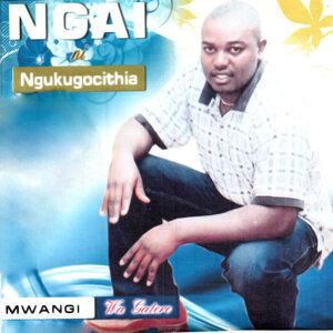 Mwangi Wa Gatere 歌手頭像