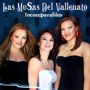 Las Musas Del Vallenato