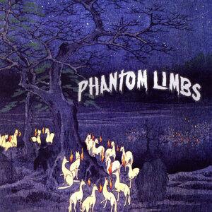 Phantom Limbs 歌手頭像