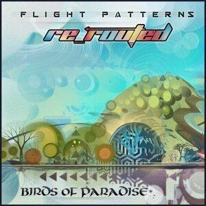 Birds of Paradise 歌手頭像
