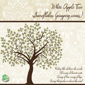 White Apple Tree, pingpong 歌手頭像