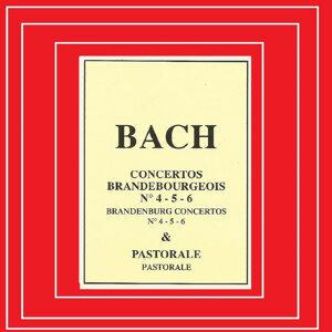Musici di San Marco, RSO Stuttgart 歌手頭像