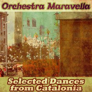 Orchestra Maravella 歌手頭像
