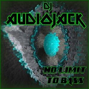 Dj Audiojack 歌手頭像
