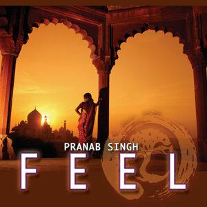 Pranab Singh 歌手頭像