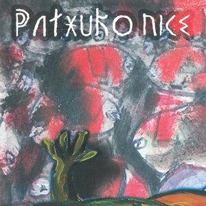 Patxuko nice 歌手頭像