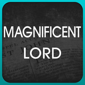 Magnificent Lord