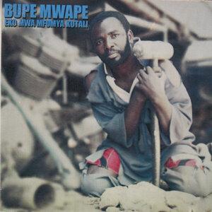Bupe Mwape 歌手頭像