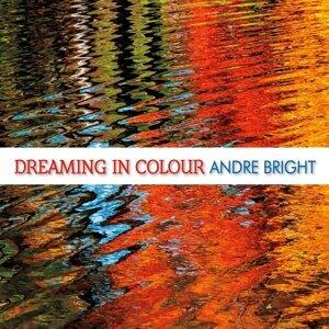 Andre Bright 歌手頭像