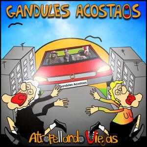Gandules Acostaos 歌手頭像