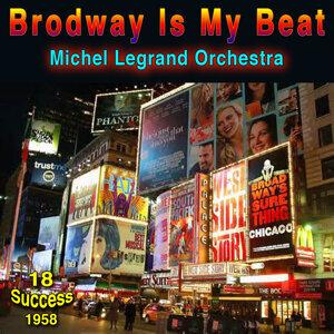 Michel Legrand Orchestra 歌手頭像