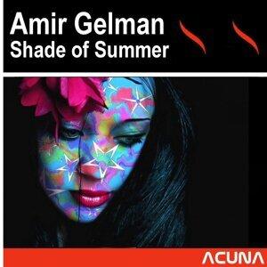 Amir Gelman