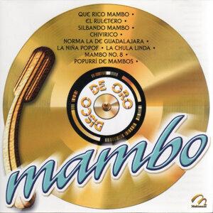 Orquesta De Ramon Marquez | Orquesta De Pérez Prado | Pepe Castillo 歌手頭像