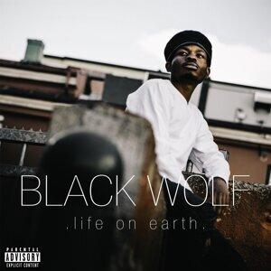 Black Wolf 歌手頭像