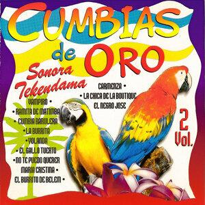 Sonora Tekendama