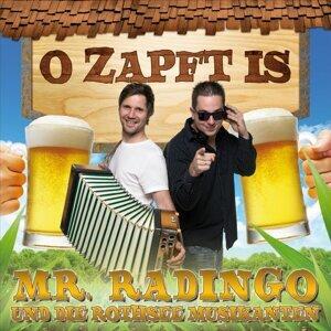 Mr. Radingo & Die Rothsee Musikanten 歌手頭像
