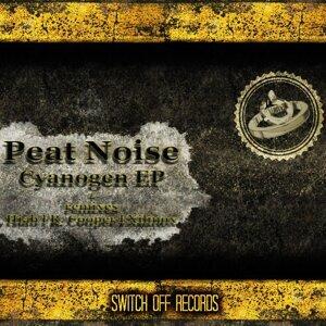 Peat Noise 歌手頭像