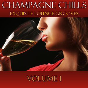 Champagne Chills - Exquisite Lounge Grooves アーティスト写真