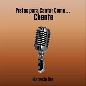 Mariachi Oro 歌手頭像
