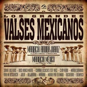 Maricahi Arriba Juarez / Mariachi Mexico 歌手頭像
