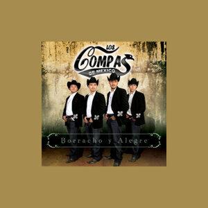 Los Compas de Mexico 歌手頭像