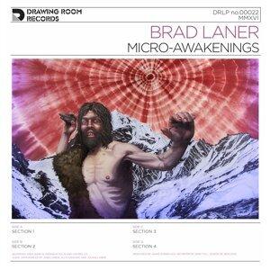 Brad Laner 歌手頭像