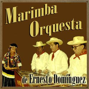 Marimba Orquesta De Ernesto Domínguez 歌手頭像