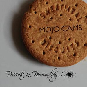 The Mojo Cams 歌手頭像