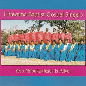 Chawama Baptist Gospel Singers 歌手頭像