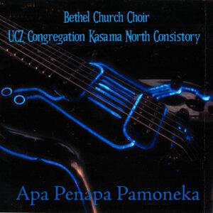 Bethel Church Choir UCZ Congregation Kasama North Consistory 歌手頭像