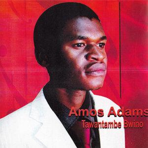 Amos Adams 歌手頭像