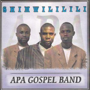 APA Gospel Band 歌手頭像