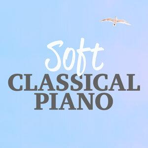 Solo Piano Classics, Musica Romántica del Piano, Relaxing Classical Piano Music 歌手頭像