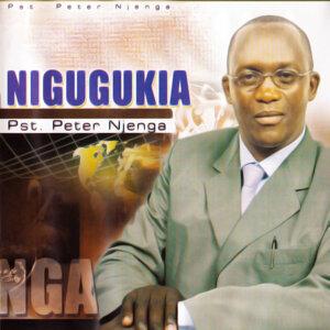 Pst. Peter Njenga 歌手頭像