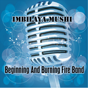 Beginning And Burning Fire Band 歌手頭像