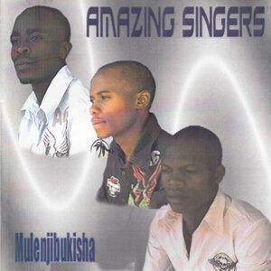Amazing Singers 歌手頭像